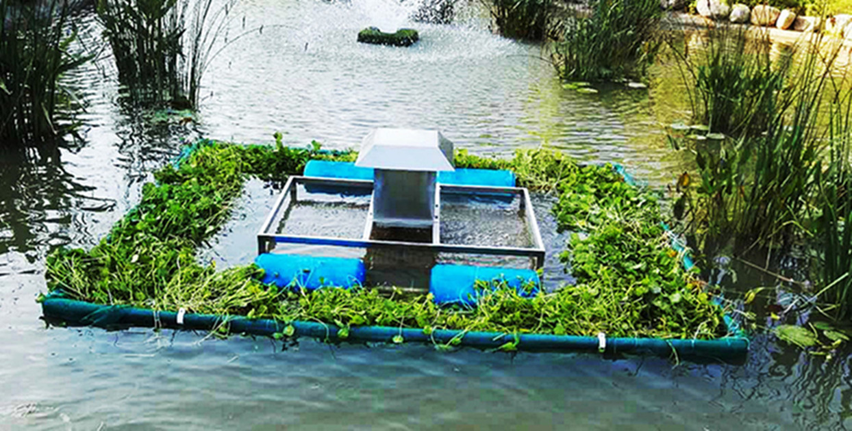 River Biorehabilitation,  River Bioremediation,  Uraban river management,  River pollution control