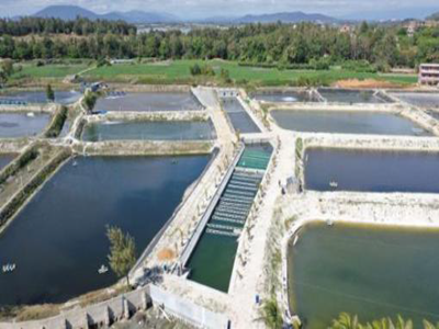 Aquaculture Wastewater Treatment