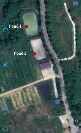 Pond Location 1.png